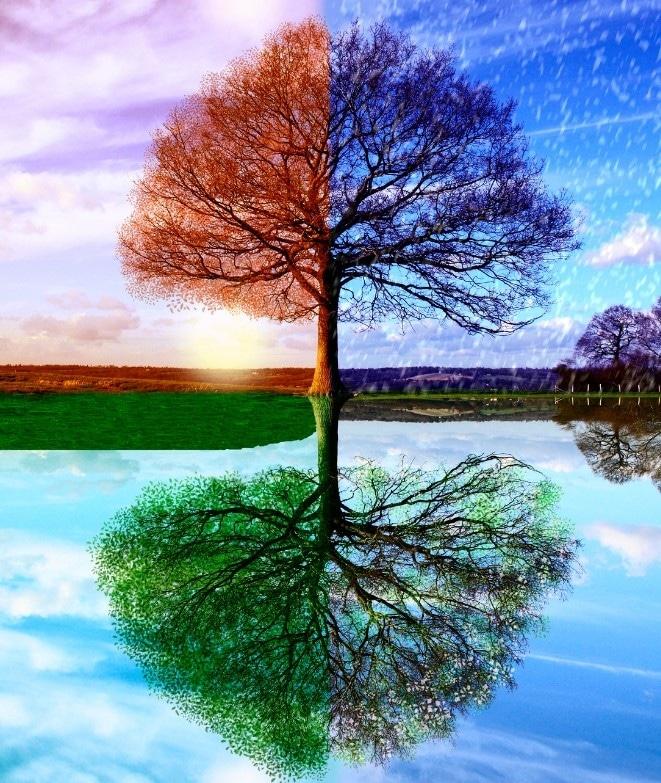 l'alternanza delle stagioni da il senso del ritrovare l'equilibrio interiore periodicamente